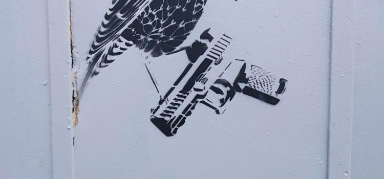 Pistolfugl