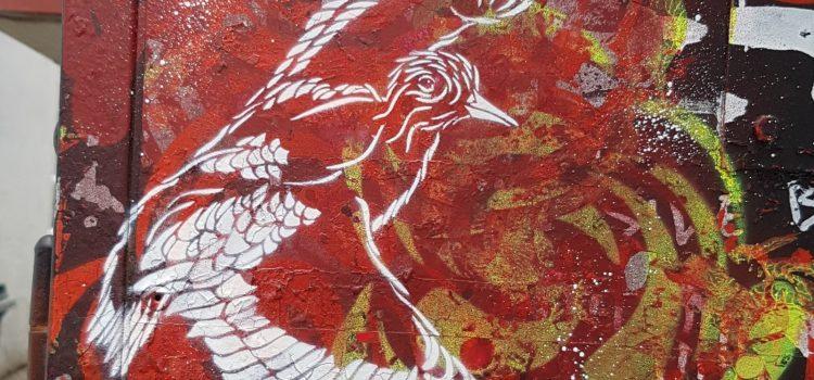 Fugl på rød bakgrunn
