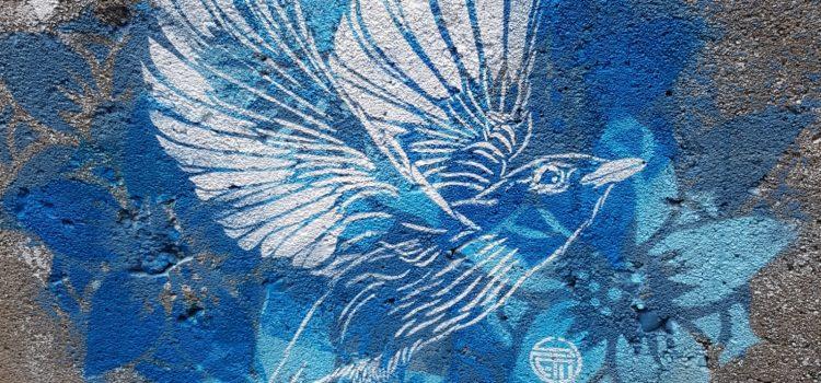 Flygende fugl på blå bakgrunn