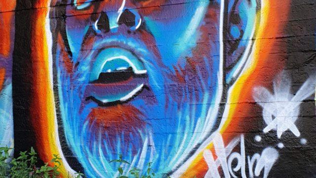 Blå skjegget mann