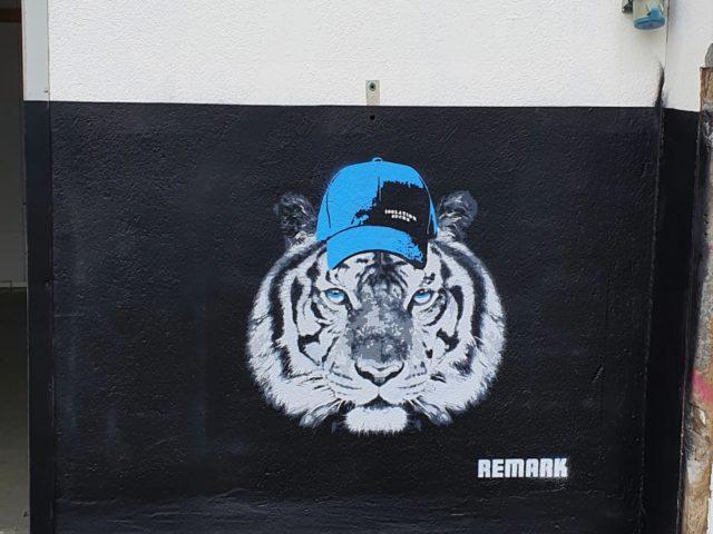 Tiger med caps