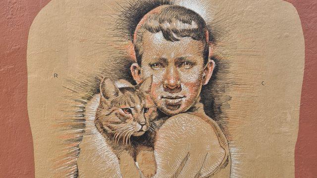 Gutt og katt